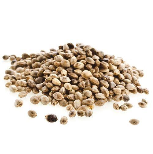 Конопляное семя купить в саратове вред от марихуаны для мужчины